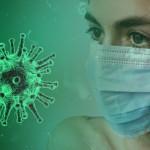 Infectierisicio katten, fretten en honden met COVID-19