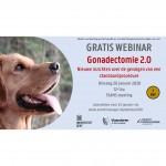 Gonadectomie 2.0 - gratis webinar met de nieuwe inzichten